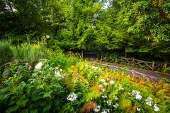 La trayectoria y las flores en el Shakespeare cultivan un huerto, en Central Park, hombre Fotos de archivo