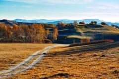 La trayectoria y los árboles en salida del sol de los prados de la caída Imagen de archivo libre de regalías