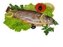 La truite a fait cuire au four se trouve sur les feuilles de l'isolat de salade image stock