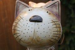 La tête du chat de jouet Photos stock