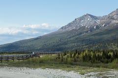La tubería de Transporte-Alaska Foto de archivo
