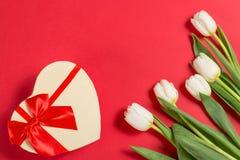 La tulipe blanche de ressort coloré fleurit avec un giftbox décoratif de coeur sur le fond rouge comme carte de voeux avec l'espa Image libre de droits