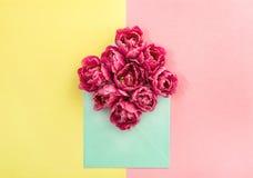 La tulipe fleurit le papier jaune de fleurs de rose d'enveloppe Photographie stock libre de droits