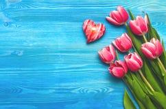 La tulipe fleurit sur le fond en bois avec l'espace de copie concept de jour de femme Image libre de droits