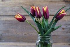 La tulipe rouge fraîche fleurit le bouquet dans un pot en verre Image libre de droits