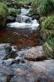 La turba irlandesa manchó el río Fotos de archivo libres de regalías
