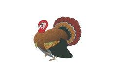 La Turchia Immagini Stock