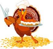 La Turchia e grafico a torta illustrazione di stock
