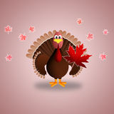 La Turchia per Thankgiving Fotografia Stock