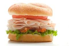 La Turchia sul panino Fotografia Stock