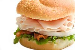 La Turchia sul panino Fotografia Stock Libera da Diritti