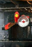 La Turquie en rôtissoire avec le thermomètre de viande Photos libres de droits