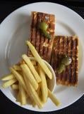 La Turquie fumée, l'avocat et la Brie Sandwich Photo libre de droits