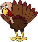La Turquie impatiente Images stock