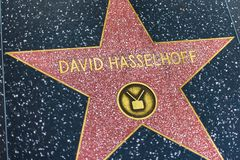LA, U.S.A. - 30 OTTOBRE 2018: Stella di David Hasselhoffs sul hall of fame di hollywood fotografie stock