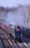 La unión de Suráfrica preservó el motor de vapor. Foto de archivo libre de regalías