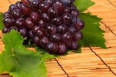 Uva roja y hoja Imagen de archivo libre de regalías