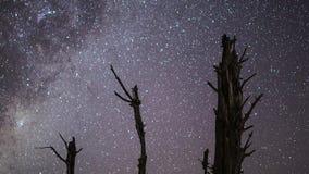La vía láctea en la noche en el Karoo metrajes