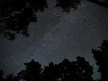 La vía láctea protagoniza la atmósfera del bosque de la constelación del cassiopeia fotos de archivo