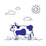 La vaca pasta Foto de archivo libre de regalías