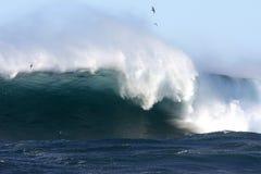 La vague déferlante énorme au cap encaisse, Sydney, Australie. Photos stock