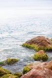 La vague heurtant contre des algues a couvert la roche Image libre de droits