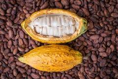 La vaina y las habas maduras del cacao pusieron en fondo de madera rústico imagen de archivo