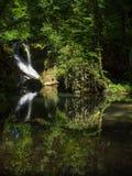 La Vaioaga nel parco nazionale di Cheile Nerei - Romania Fotografie Stock