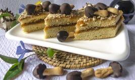 La vaisselle rectangulaire blanche avec des tranches de gâteau Photo stock