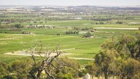 La vallée Barossa photo libre de droits