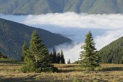 La vallée d'Elwha et le Bailey Range, parc national olympique, Washington photos stock
