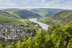 La vallée de la Moselle images libres de droits