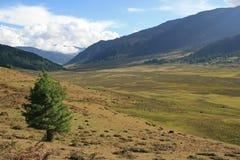 La vallée de Phojika - le Bhutan Image libre de droits
