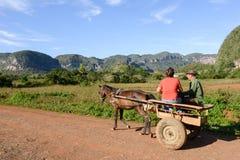 La vallée de Vinales sur le Cuba Photographie stock