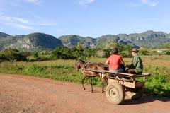 La vallée de Vinales sur le Cuba Photo libre de droits