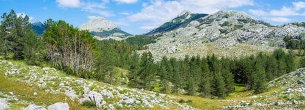 La vallée verte Photo libre de droits