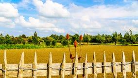 La valla de estacas atada con alambre alrededor del los granjeros recientemente arados coloca Foto de archivo