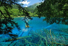 La valle del Jiuzhaigou Fotografie Stock Libere da Diritti