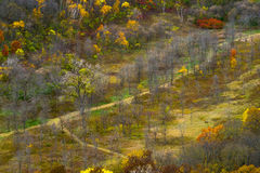 La valle di autunno, fiume fa il bluff il parco di stato immagini stock libere da diritti