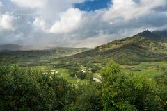 La valle di Hanalei da Princeville trascura Kauai Immagine Stock