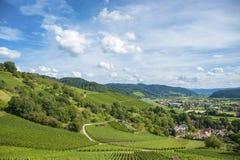 La valle di Kinzig con le vigne in Gengenbach Immagine Stock Libera da Diritti