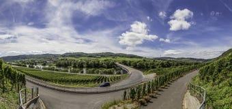 La valle di Mosella Fotografia Stock