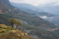 La valle di Parnassus Fotografia Stock Libera da Diritti