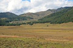 La valle di Phojika - il Bhutan (2) Fotografia Stock Libera da Diritti