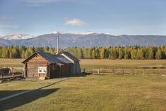 La valle di Uimon, paesaggio di autunno di Altai della montagna La Russia Immagini Stock