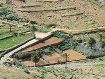 La valle di Vega de Rio Palmas su Fuerteventura Fotografie Stock Libere da Diritti