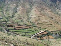 La valle di Vega de Rio Palmas su Fuerteventura Immagine Stock Libera da Diritti