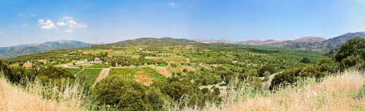 Valle fertile in Grecia Immagini Stock Libere da Diritti