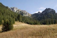 La valle Koscieliska 4. Immagini Stock