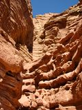 La valle persa. Deserto di Arava. Immagine Stock Libera da Diritti